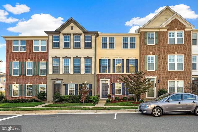 493 Flameflower Terrace SE, LEESBURG, VA 20175 (#VALO424106) :: Certificate Homes