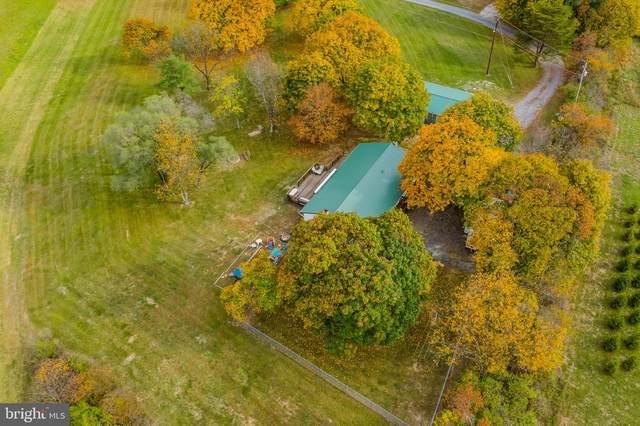 518 Cranes Gap Road, CARLISLE, PA 17013 (#PACB129102) :: The Joy Daniels Real Estate Group