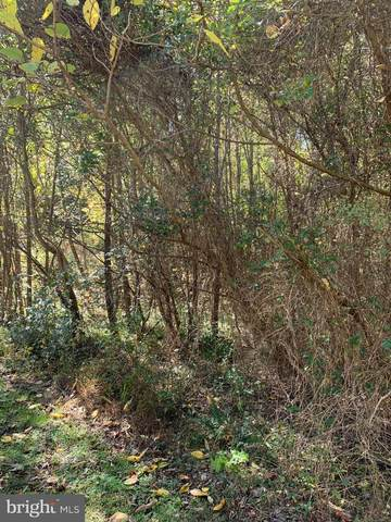 109 Wood Landing Road, FREDERICKSBURG, VA 22405 (#VAST226604) :: LoCoMusings