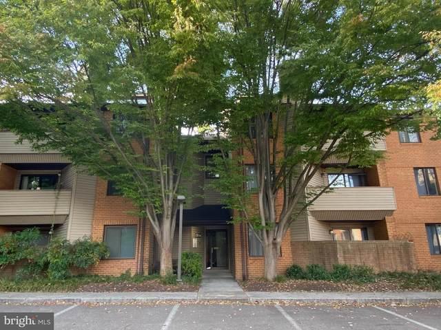 1704 Mt. Washington Court F, BALTIMORE, MD 21209 (#MDBA528650) :: The Sky Group
