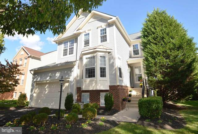 26052 Rachel Hill Drive, CHANTILLY, VA 20152 (#VALO424180) :: The Bob & Ronna Group