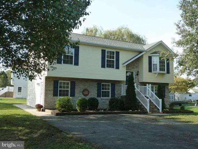 52 Hillview Drive, MAURERTOWN, VA 22644 (#VASH120698) :: The Redux Group