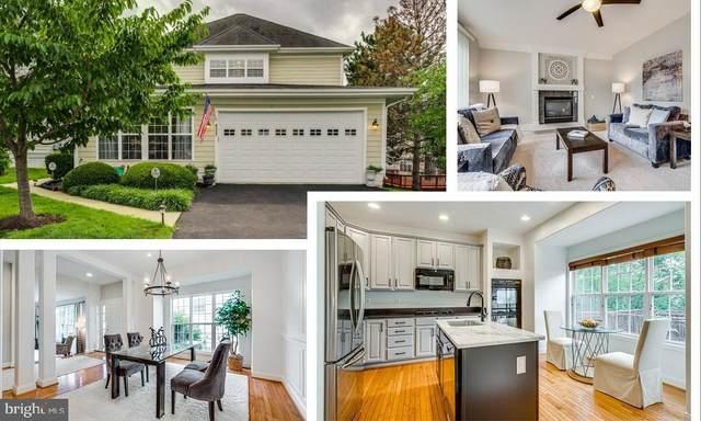 8533 Bauer Circle, SPRINGFIELD, VA 22152 (#VAFX1162884) :: Tessier Real Estate
