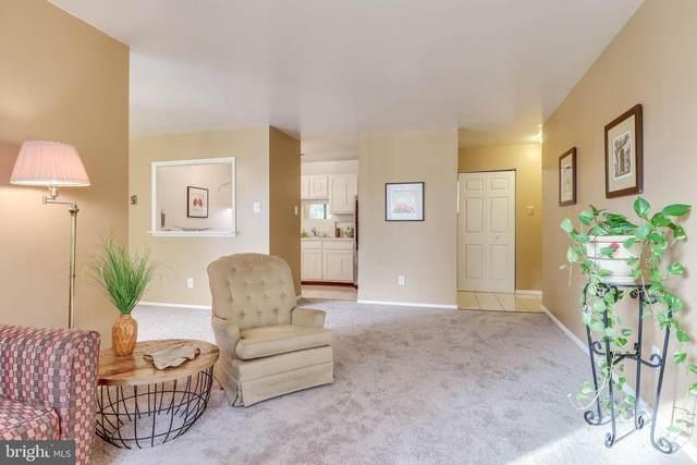 483 N Armistead Street #302, ALEXANDRIA, VA 22312 (#VAAX252468) :: Jacobs & Co. Real Estate