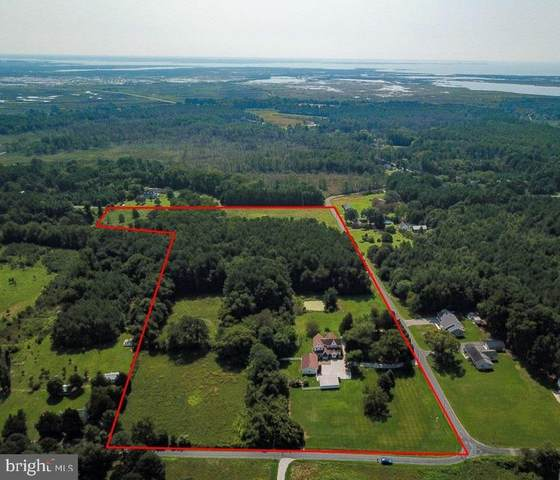 11359 Hodson White Road, DEAL ISLAND, MD 21821 (#MDSO104066) :: RE/MAX Coast and Country