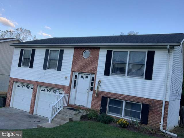 223 Wildflower, MARTINSBURG, WV 25404 (#WVBE181356) :: LoCoMusings