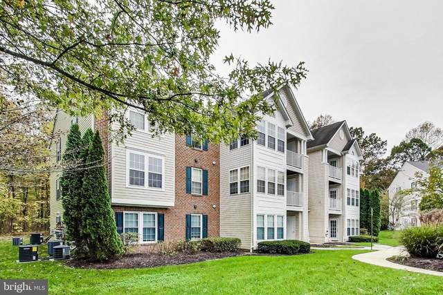 8702 Natures Trail Court #203, ODENTON, MD 21113 (#MDAA450574) :: Great Falls Great Homes