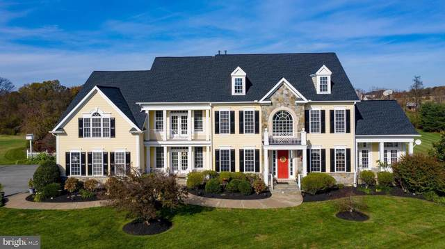 20217 Peach Grove Lane, DICKERSON, MD 20842 (#MDMC731272) :: Ultimate Selling Team