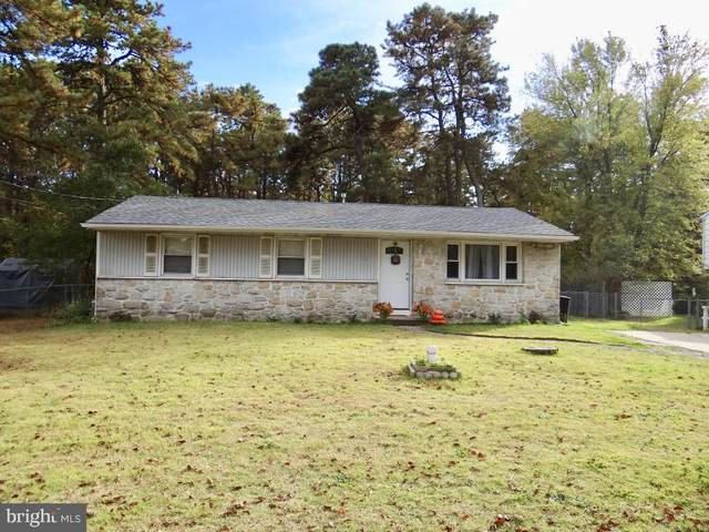 1728 Red Feather Trail, BROWNS MILLS, NJ 08015 (#NJBL384712) :: Linda Dale Real Estate Experts