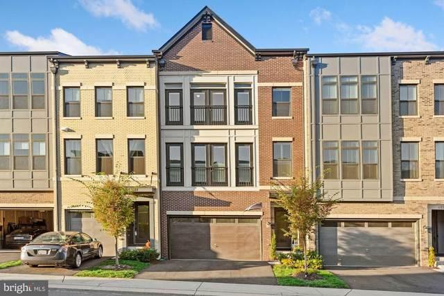 42284 Impervious Terrace, BRAMBLETON, VA 20148 (#VALO424244) :: Jennifer Mack Properties