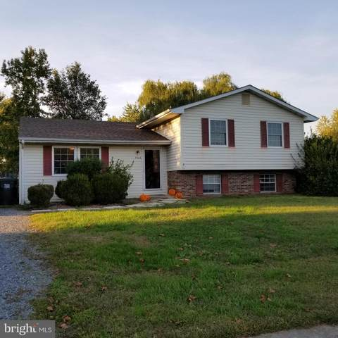 7306 Kathy Street, EASTON, MD 21601 (#MDTA139614) :: RE/MAX Coast and Country