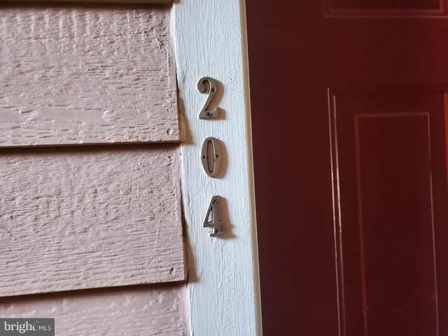 21001 Timber Ridge Terrace #204, ASHBURN, VA 20147 (#VALO424262) :: SP Home Team