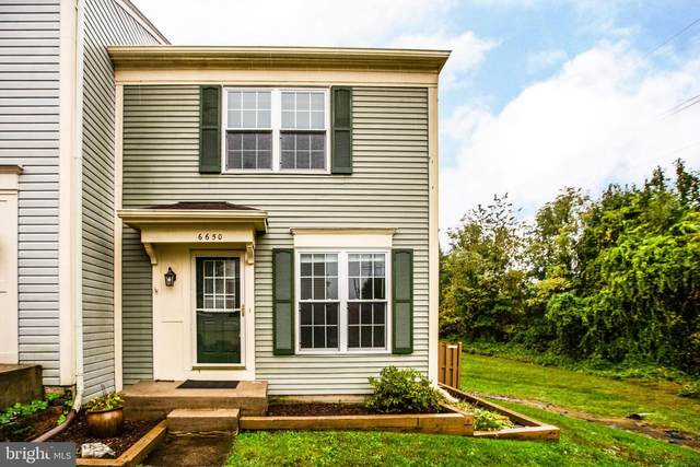 6650 High Valley Lane, ALEXANDRIA, VA 22315 (#VAFX1163058) :: Great Falls Great Homes