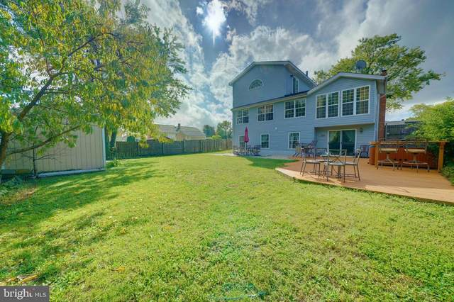 7513 Saffron Court, HANOVER, MD 21076 (#MDAA450652) :: Century 21 Dale Realty Co