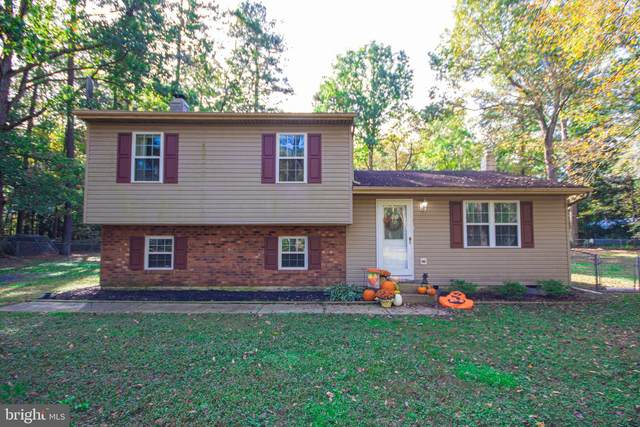 31865 Morris Leonard Road, PARSONSBURG, MD 21849 (#MDWC110398) :: RE/MAX Coast and Country