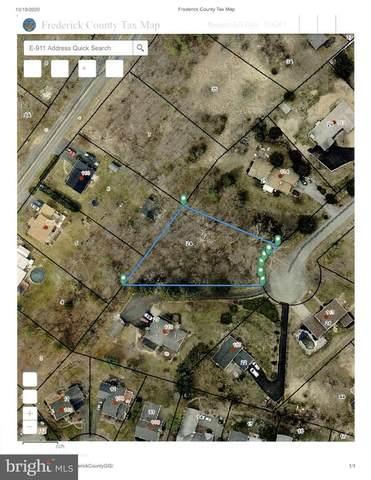 116 Carter Place, WINCHESTER, VA 22602 (#VAFV160476) :: Mortensen Team