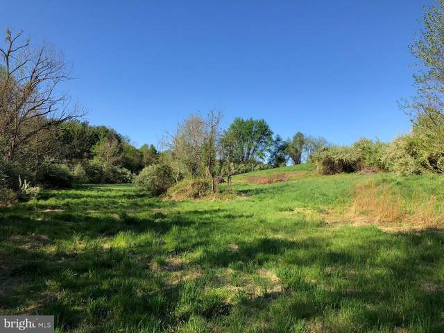 Lot B1D, Old Wheatland Rd, WATERFORD, VA 20197 (#VALO424332) :: Bruce & Tanya and Associates