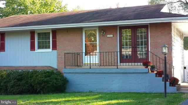 603 E Charlotte Street, STERLING, VA 20164 (#VALO424334) :: Great Falls Great Homes