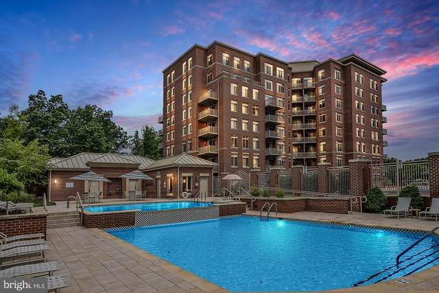 4480 Market Commons Drive #413, FAIRFAX, VA 22033 (#VAFX1163294) :: The Dailey Group