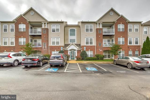 2507 Amber Orchard Court W #203, ODENTON, MD 21113 (#MDAA450766) :: Keller Williams Flagship of Maryland