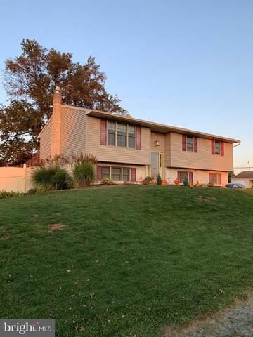 7 Rose Virginia Road, OLEY, PA 19547 (#PABK366156) :: LoCoMusings
