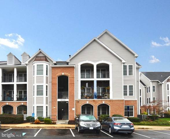 46590 Drysdale Terrace #103, STERLING, VA 20165 (#VALO424414) :: Tom & Cindy and Associates