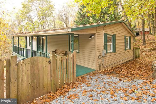 4 Turkey Run Lane, HEDGESVILLE, WV 25427 (#WVMO117660) :: Great Falls Great Homes
