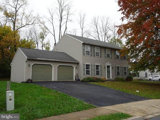 113 Cameron Drive, DOUGLASSVILLE, PA 19518 (MLS #PABK366168) :: Kiliszek Real Estate Experts