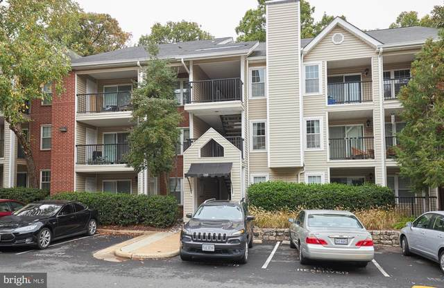 3303 Wyndham Circle #145, ALEXANDRIA, VA 22302 (#VAAX252624) :: The Piano Home Group