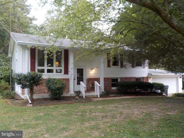 304 Sandy Hill Road, CAMBRIDGE, MD 21613 (#MDDO126280) :: RE/MAX Coast and Country