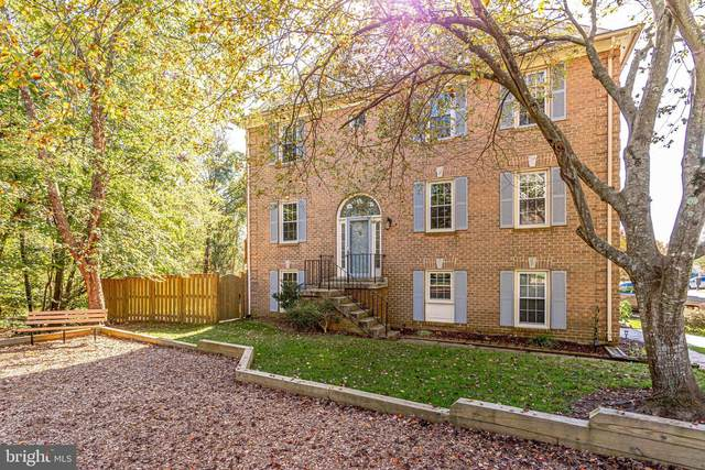 5972 Norham Drive, ALEXANDRIA, VA 22315 (#VAFX1163612) :: The Redux Group