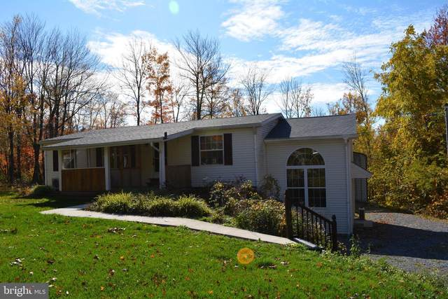 3698 Royer Rd, WILLIAMSBURG, PA 16693 (#PABR100114) :: Keller Williams Flagship of Maryland
