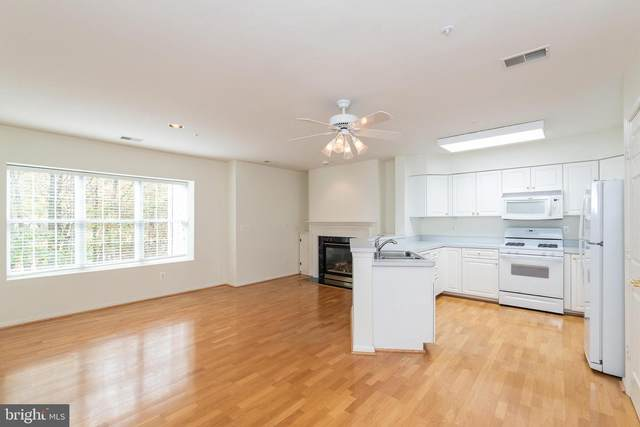 12103 Tullamore Court #202, LUTHERVILLE TIMONIUM, MD 21093 (#MDBC510866) :: The Gus Anthony Team