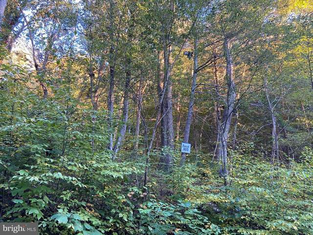 Lot 103 Wilson Run Trail, MILAM, WV 26838 (#WVHD106446) :: EXIT Realty Enterprises