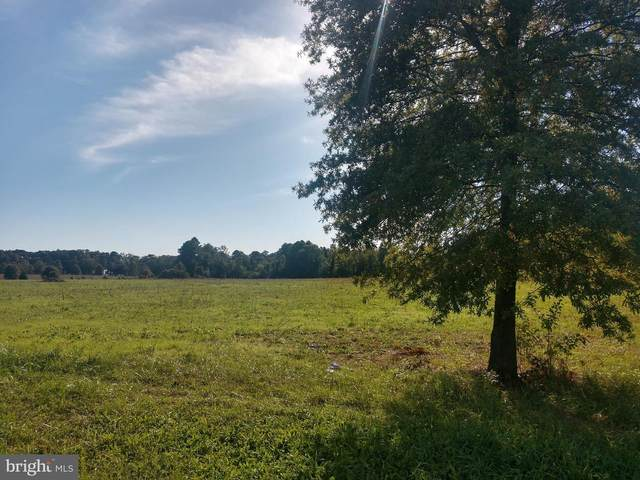 Lot 29 Hickory Cove Road, HURLOCK, MD 21643 (#MDDO126282) :: The Vashist Group