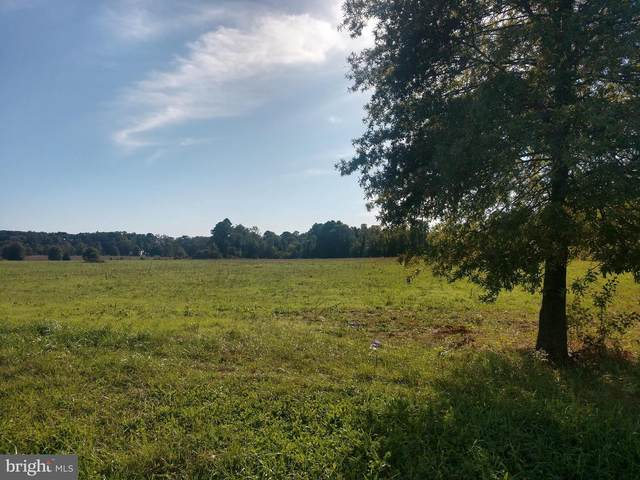 Lot 30 Hickory Cove Road, HURLOCK, MD 21643 (#MDDO126284) :: The Vashist Group