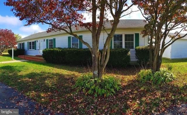 25525 Hignutt Road, DENTON, MD 21629 (#MDCM124694) :: Certificate Homes