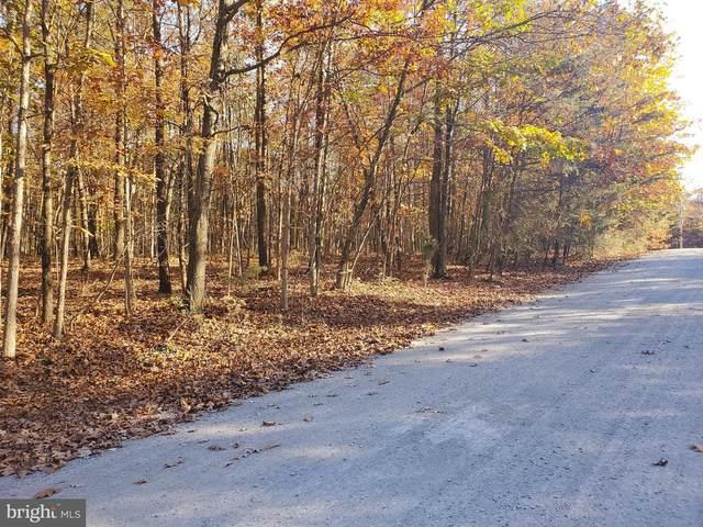 Rustling Leaf Lane, HEDGESVILLE, WV 25427 (#WVMO117662) :: Give Back Team
