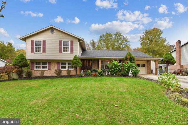 1637 Hopefield Road, SILVER SPRING, MD 20905 (#MDMC731886) :: The Sky Group