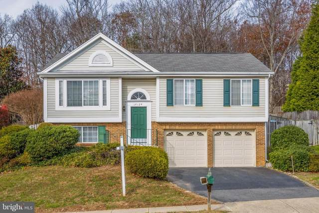 14124 Wood Rock Way, CENTREVILLE, VA 20121 (#VAFX1163806) :: The Vashist Group