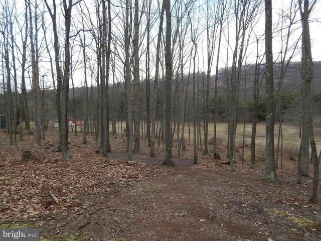 Lot 4 Willet Run Woodmont Road, GREAT CACAPON, WV 25422 (#WVMO117666) :: Jim Bass Group of Real Estate Teams, LLC