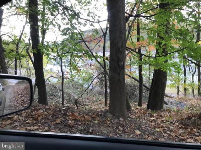 0 Elizabeth Street, POTTSVILLE, PA 17901 (#PASK133002) :: LoCoMusings