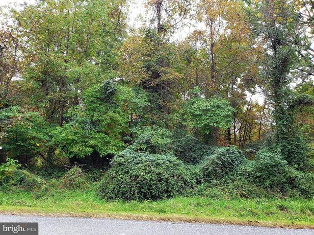 LOT 32 North Lake Road, STEVENSVILLE, MD 21666 (#MDQA145760) :: CENTURY 21 Core Partners