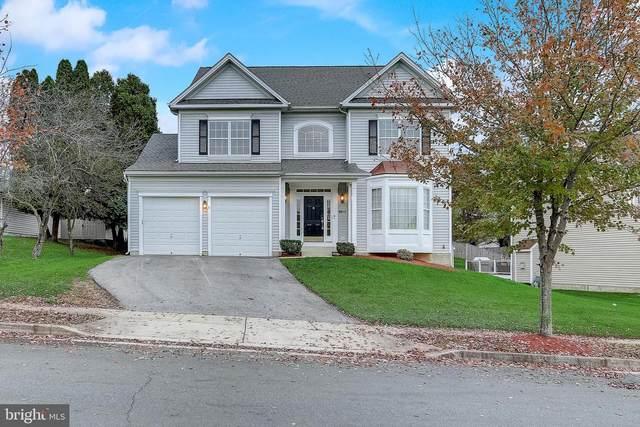 10003 Paxton Road, RANDALLSTOWN, MD 21133 (#MDBC511134) :: A Magnolia Home Team