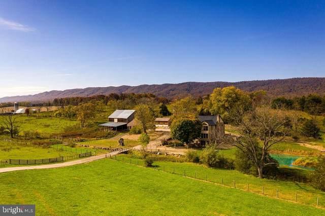 3837 John Marshall Highway, STRASBURG, VA 22657 (#VASH120742) :: Blackwell Real Estate