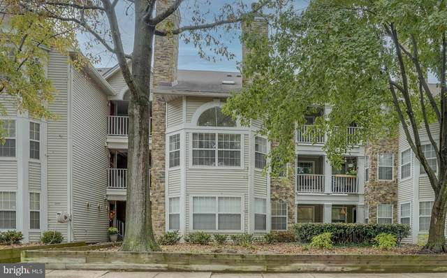 5620 Willoughby Newton Drive #16, CENTREVILLE, VA 20120 (#VAFX1164216) :: Pearson Smith Realty