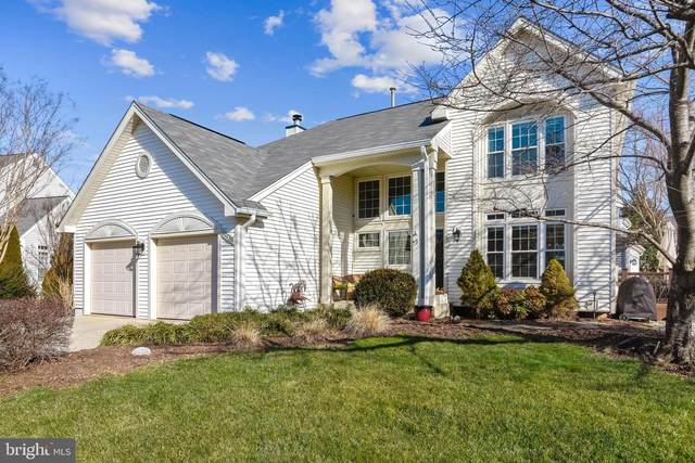 20230 Birdsnest Place, ASHBURN, VA 20147 (#VALO424676) :: The Redux Group