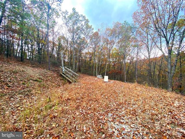 LOTS 56-59 Western View Road, AUGUSTA, WV 26704 (#WVHS114886) :: Better Homes Realty Signature Properties