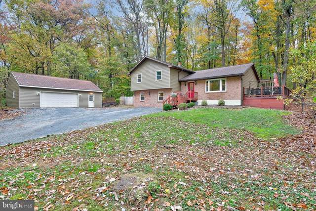 2096 S Forge Road, PALMYRA, PA 17078 (#PALN116520) :: The Joy Daniels Real Estate Group
