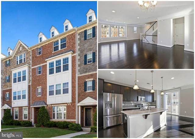 43976 Vaira Terrace, CHANTILLY, VA 20152 (#VALO424814) :: The Redux Group